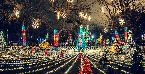 Comed Shares The Light By Supporting Community Holiday Lighting Events